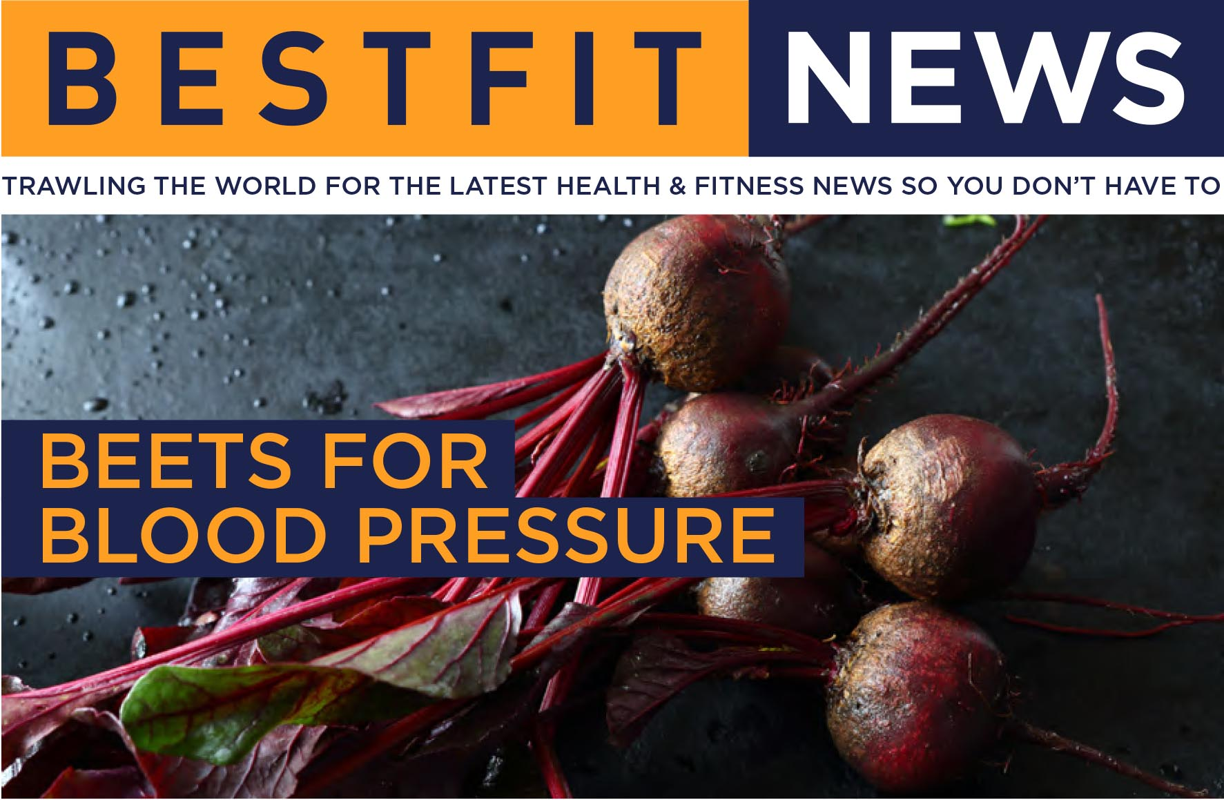 Bestfit issue 10 news header