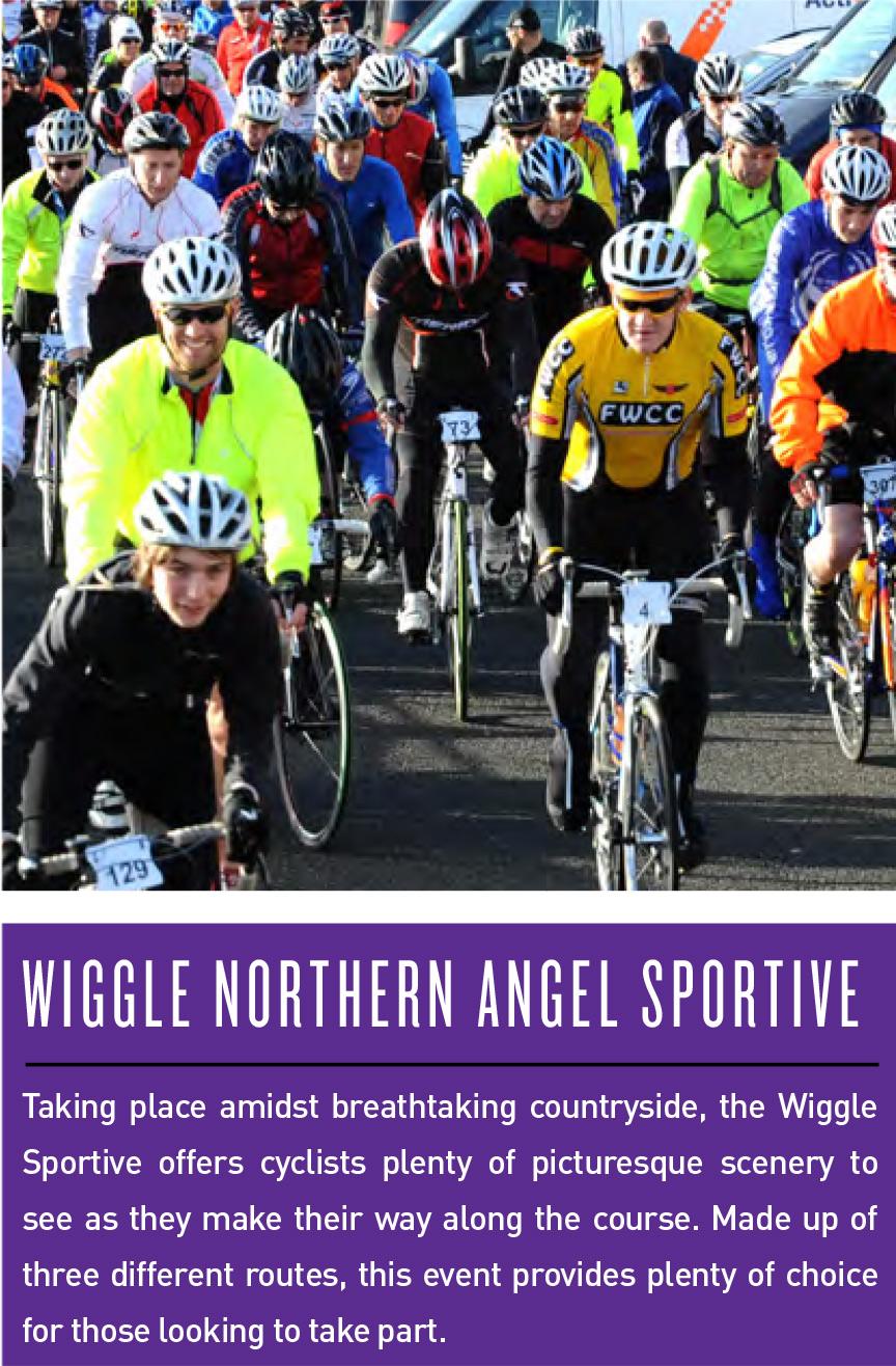wiggle-northern