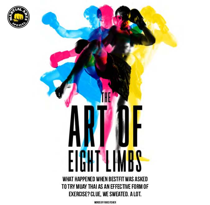 Art of eight limbs