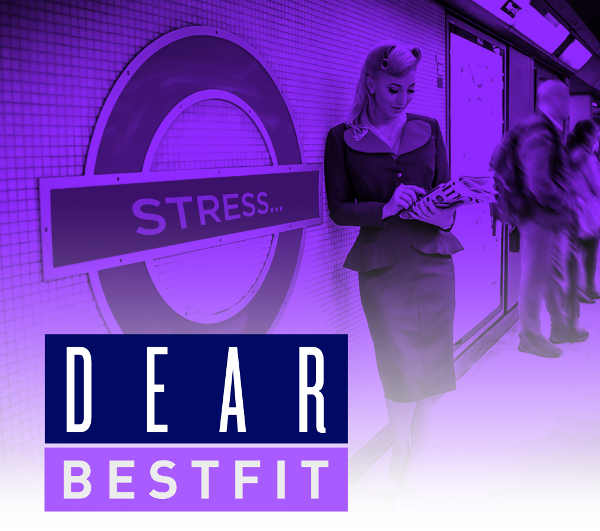 dear-bestfit-cover