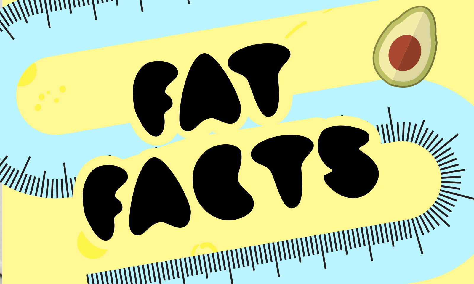 feature---FAT-FACTS