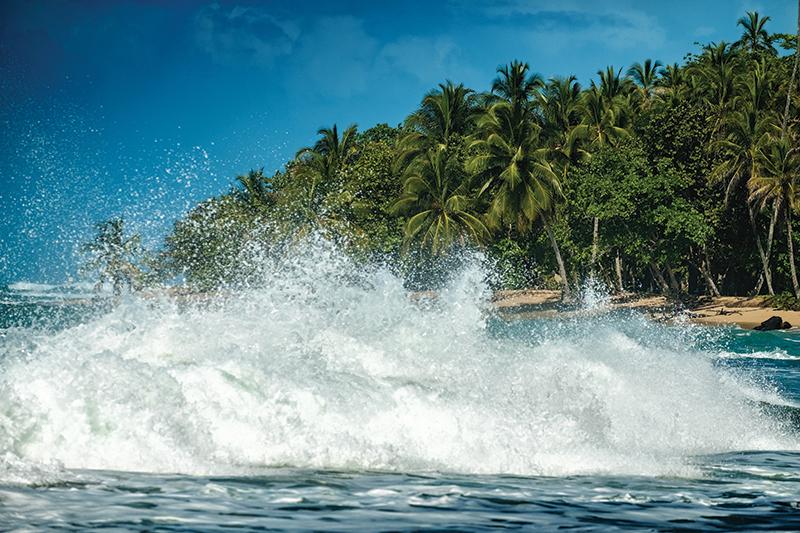 RUNNING RAINFOREST COSTA RICA