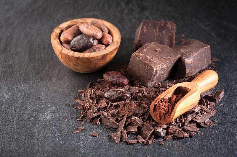 a-z health and wellness bible dark chocolate